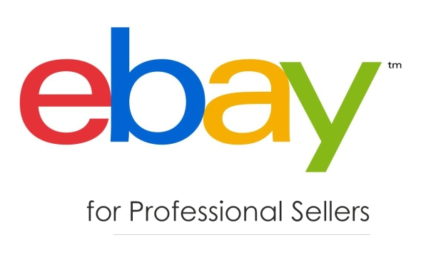 eBay Workshop for professional Sellers